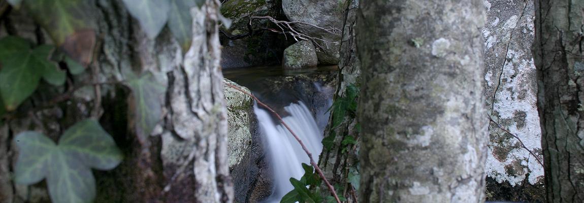 Il Monte Limbara e l'acqua