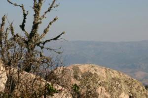panorama3_limbara