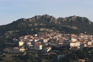 calangianus