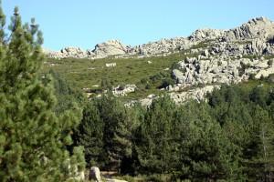 panorama1_limbara